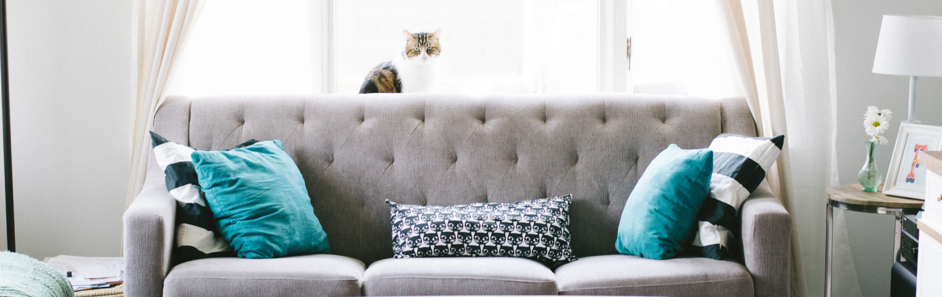 couch - How to Clean Microfiber Couches